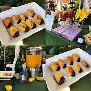Fairchild Garden - Mango Festival 2017 - Grate Madeleine